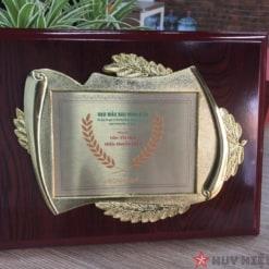 Kỷ niệm chương gỗ đồng 2
